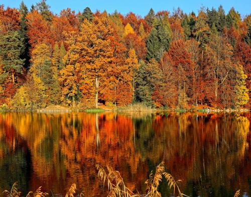Herbstprogramm